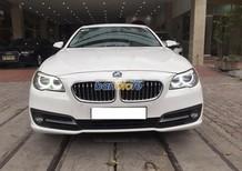 Xe Cũ BMW 5 520i 2014