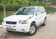 Cần bán Ford Escape năm sản xuất 2002, màu trắng
