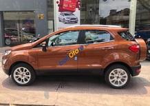 Bán xe Ford EcoSport sản xuất 2018, chưa bao gồm khuyến mãi. Hotline: 0938211346 để nhận chương trình