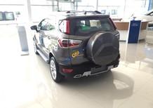 Cần bán xe Ford EcoSport năm 2018, màu nâu giá cạnh tranh, tặng bảo hiểm vật chất, giao xe tận nơi