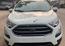 Cần bán Ford EcoSport đời 2018, màu trắng giá rẻ