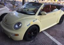 Cần bán Volkswagen Beetle sản xuất năm 2003, màu kem (be), nhập khẩu