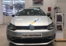 Bán ô tô Volkswagen Polo năm sản xuất 2015, màu bạc, nhập khẩu nguyên chiếc, giá tốt