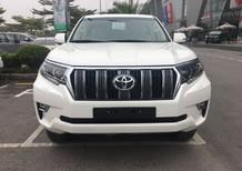 Cần bán xe Toyota Prado 2.7L VX năm sản xuất 2019, màu trắng, nhập khẩu
