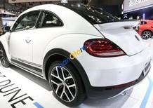 Bán Volkswagen Beetle năm sản xuất 2018, màu trắng, xe nhập, xe mới 100%