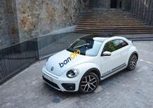 Bán Volkswagen New Beetle năm 2018, màu trắng, nhập khẩu nguyên chiếc