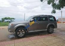 Cần bán gấp Ford Everest sản xuất 2012, màu xám
