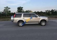 Cần bán Ford Everest sản xuất 2015, màu bạc, giá 735tr