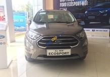 Bán Ford EcoSport Titanium sản xuất năm 2018, màu xám (ghi)