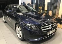 Bán xe Mercedes E250 Xanh đen cũ - lướt 4/2018 Chính hãng.