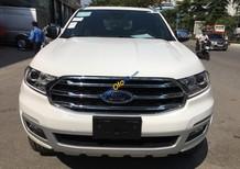 Bán ô tô Bán Ford Transit Luxury đời 2018, nhập khẩu, đủ màu giao ngay. Hỗ trợ 90% giá trị xe