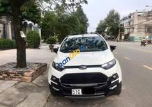 Bán ô tô Ford EcoSport Titaninum 2017, màu trắng, sử dụng giữ gìn, cẩn thận