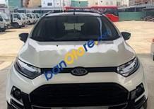 Cần bán xe Ford EcoSport Titanium năm sản xuất 2017, màu trắng