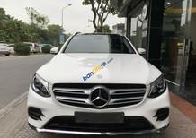 Bán Mercedes GLC300 năm 2016, màu trắng còn mới giá tốt