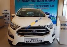 Bán Ford EcoSport 1.0AT sản xuất 2018, màu trắng giá cạnh tranh