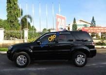 Bán xe Ford Escape sản xuất 2009, màu đen, giá 374tr