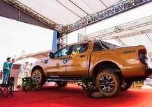 Bán xe Ford Ranger 4x2 XLS AT năm 2018, nhập khẩu nguyên chiếc
