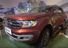 Bán xe Ford Everest năm 2018, màu đỏ