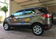 Bán ô tô Ford EcoSport sản xuất năm 2015 chính chủ, giá chỉ 515 triệu