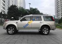 Cần bán gấp Ford Everest AT năm 2010, màu bạc chính chủ