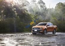 Cần bán xe Ford Ranger sản xuất năm 2018, màu nâu
