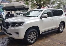 Cần bán Toyota Prado VX đời 2019, màu trắng, nhập mới xe giao ngay