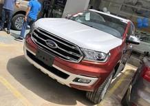 Bán xe Ford Everest 2.0L Bitturbo 4x4 AT 2019, màu đỏ, nhập khẩu chính hãng giao ngay