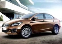 Cần bán xe Suzuki Ciaz năm sản xuất 2019, màu nâu, nhập khẩu, 499 triệu