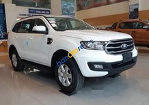 Bán Ford Everest sản xuất 2019, màu trắng
