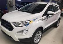 Bán xe Ford EcoSport sản xuất năm 2019, màu trắng giá tốt