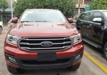 Bán Ford Everest Ambiente 2.0L AT 4x2 năm sản xuất 2019, màu đỏ, nhập khẩu nguyên chiếc