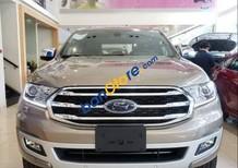 Bán Ford Everest 4x2 Titanium sản xuất năm 2019, nhập khẩu
