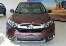 Cần bán Honda CR V năm 2019, màu đỏ, nhập khẩu