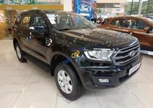 Cần bán xe Ford Everest Ambiente AT năm sản xuất 2019, màu đen, nhập khẩu, giá 952tr