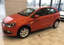 Bán Volkswagen Polo đời 2019, nhập hãng Đức bao bền bỉ, không hư hỏng vặt gì