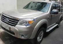 Cần bán Ford Everest sản xuất năm 2009, màu bạc số sàn