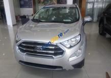 Bán Ford EcoSport năm sản xuất 2019, màu bạc
