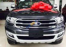 Cần bán xe Ford Everest Titanium Bi-turbo sản xuất năm 2019, màu xám, nhập khẩu