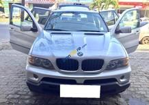 Cần bán lại xe BMW X5 năm 2004, màu bạc số tự động