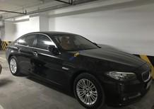 Bán BMW 5 Series 520i năm sản xuất 2015, màu đen, xe nhập chính chủ