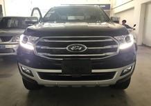 Bán Ford Everest giảm giá cực khủng