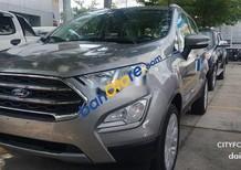 Bán xe Ford EcoSport Titanium 1.0L sản xuất 2019, màu xám