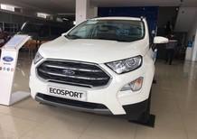Ford Ecosport Titanium 1.0L giảm giá khủng - Liên hệ ngay Hoàng Ford Đà Nẵng