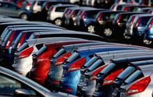 Doanh nghiệp có thể lấy giấy phép nhập khẩu ô tô qua mạng từ ngày 1/11/2019