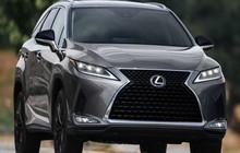 Lexus RX L Black Line 2022 trình làng với nhiều nâng cấp thiết kế bắt mắt